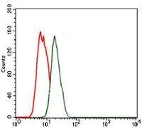 Nkx2.2 Antibody (MA5-17138) in Flow Cytometry