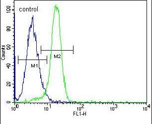 NLK Antibody (PA5-25953) in Flow Cytometry