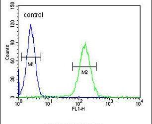 NOS1AP Antibody (PA5-23774) in Flow Cytometry