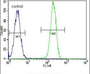 NPM1 Antibody (PA5-12447) in Flow Cytometry