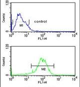 LXR alpha Antibody (PA5-26951) in Flow Cytometry