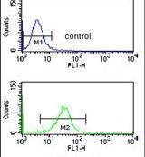 NUP153 Antibody (PA5-26125) in Flow Cytometry