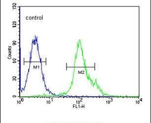 NXPH1 Antibody (PA5-26550) in Flow Cytometry