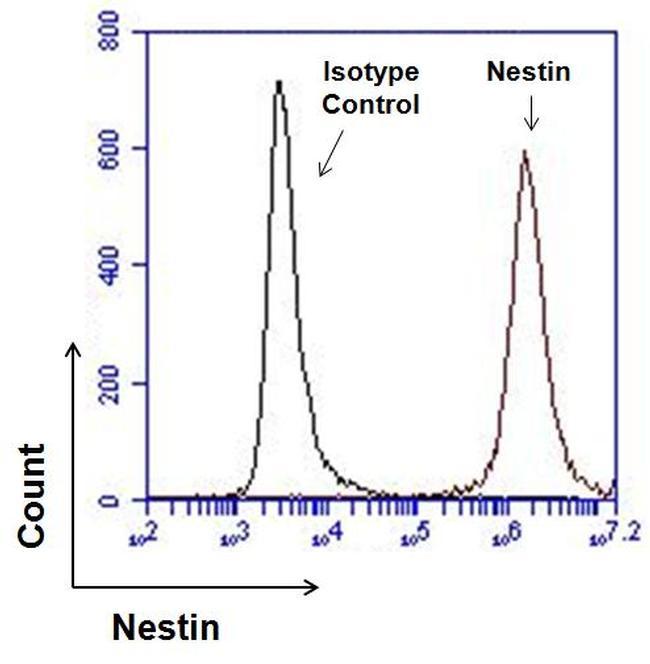 Nestin Antibody (MA1-110) in Flow Cytometry