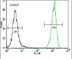 OR10H1 Antibody (PA5-24347) in Flow Cytometry