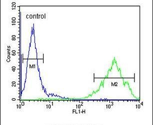 OR2Z1 Antibody (PA5-24541) in Flow Cytometry