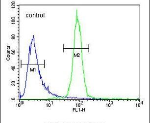 OR52A1 Antibody (PA5-24041) in Flow Cytometry