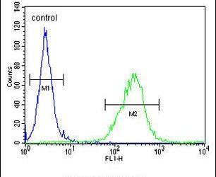 OR6C4 Antibody (PA5-24391) in Flow Cytometry