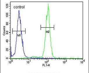 SLC51A Antibody (PA5-26837) in Flow Cytometry