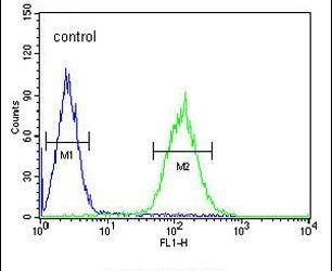 POU5F1B Antibody (PA5-24309) in Flow Cytometry