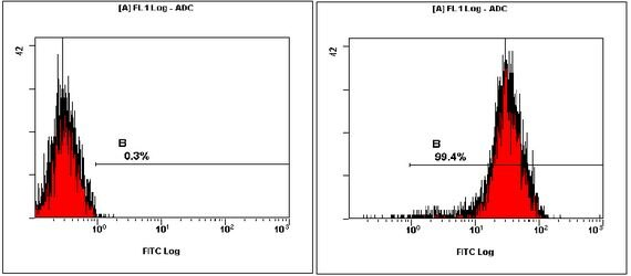 OCT4 Antibody (PA1-16943) in Flow Cytometry