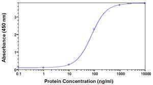 PAFAH1B2 Antibody (PA1-29511) in ELISA