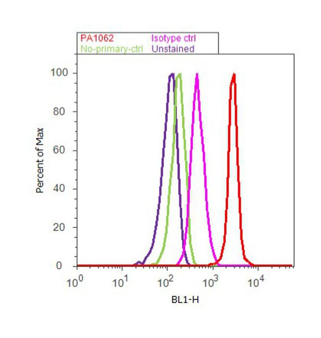 Furin Antibody (PA1-062) in Flow Cytometry