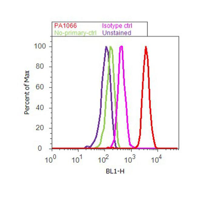 Caveolin 3 Polyclonal Antibody