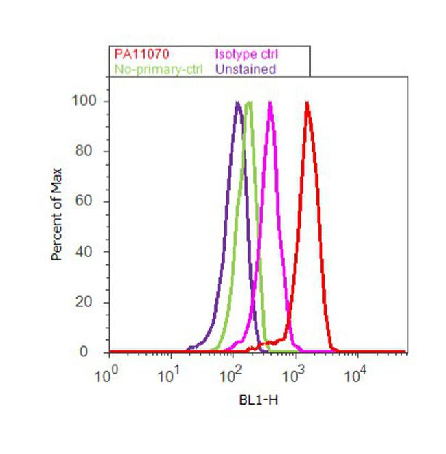 Ghrelin Antibody (PA1-1070) in Flow Cytometry