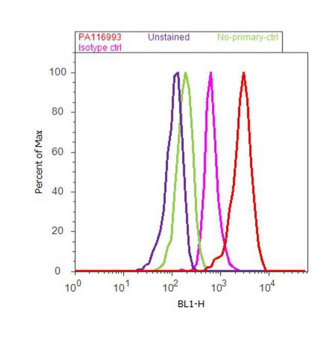 ATG9A Antibody (PA1-16993) in Flow Cytometry