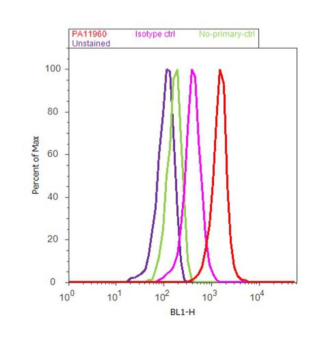 PSMB9 Antibody (PA1-1960) in Flow Cytometry