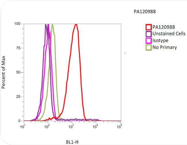 alpha Tubulin Antibody (PA1-20988) in Flow Cytometry
