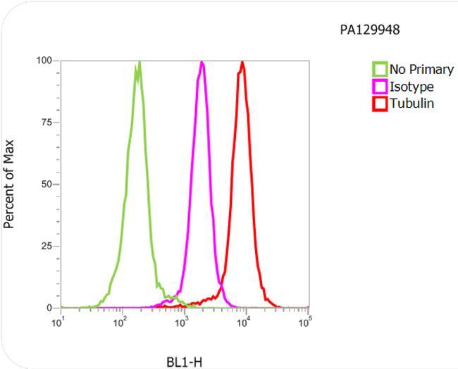 Rat IgG Secondary Antibody (PA1-29948) in Flow Cytometry