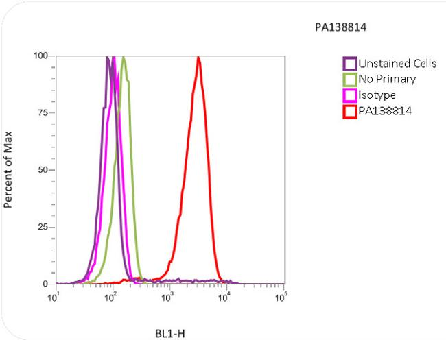 alpha Tubulin Antibody (PA1-38814) in Flow Cytometry