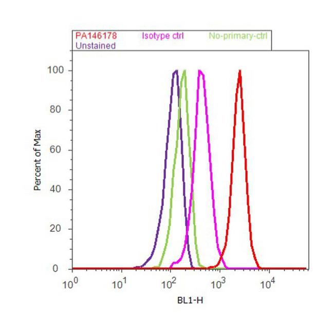 ATG5 Antibody (PA1-46178) in Flow Cytometry