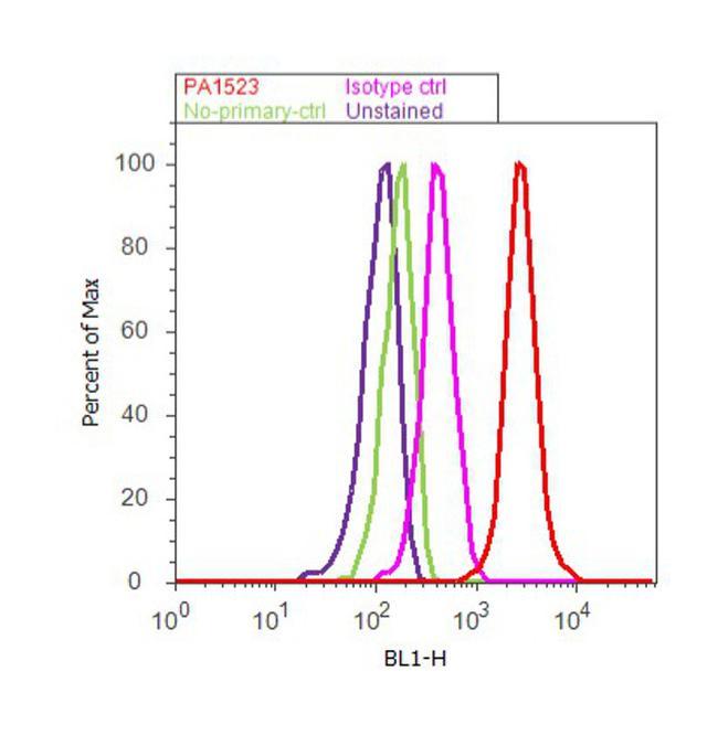 BMAL1 Antibody (PA1-523) in Flow Cytometry
