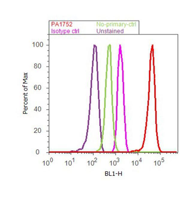 Fe65 Antibody (PA1-752) in Flow Cytometry