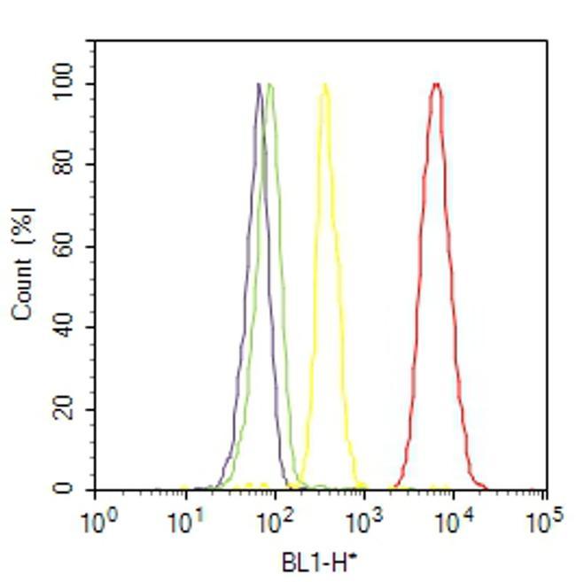 RAB3c Antibody (PA1-772) in Flow Cytometry