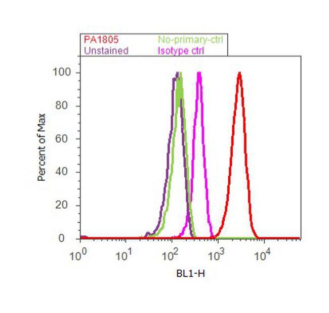 FOXO3 Antibody (PA1-805) in Flow Cytometry