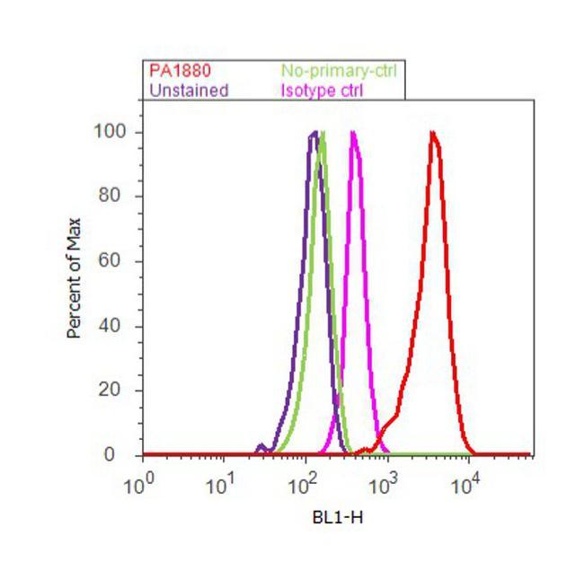 DNMT1 Antibody (PA1-880) in Flow Cytometry