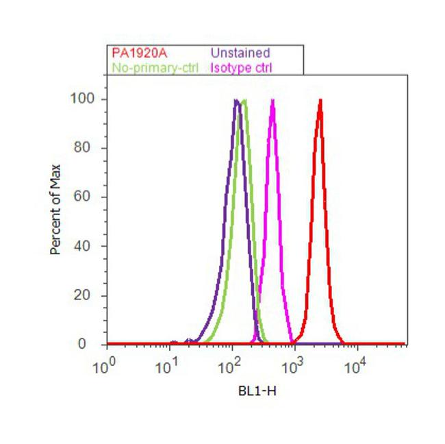 SCNN1A Antibody (PA1-920A) in Flow Cytometry