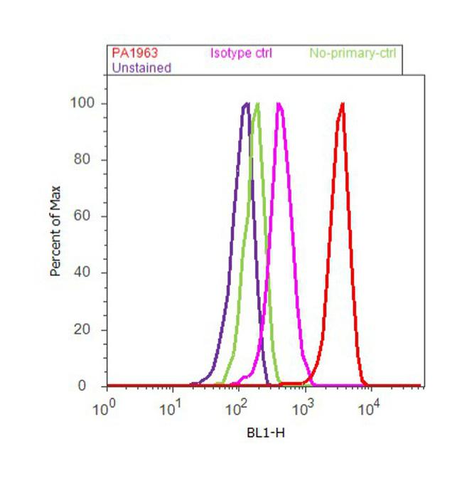 PSMA1 Antibody (PA1-963) in Flow Cytometry