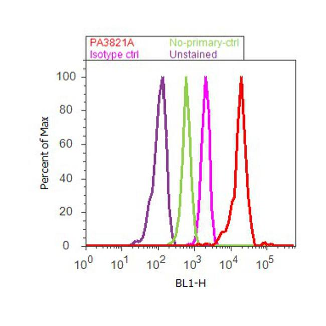 PPAR gamma Antibody (PA3-821A) in Flow Cytometry