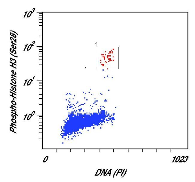 Phospho-Histone H3 (Ser28) Antibody (PA5-17318) in Flow Cytometry