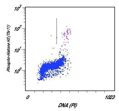 Phospho-Histone H3 (Thr11) Antibody (PA5-17360) in Flow Cytometry