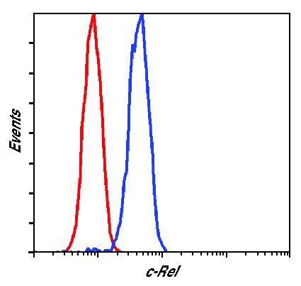 c-Rel Antibody (PA5-17452) in Flow Cytometry