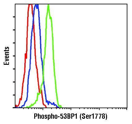 Phospho-53BP1 (Ser1778) Antibody (PA5-17462) in Flow Cytometry