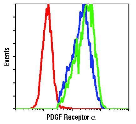 PDGFRA Antibody (PA5-17623)