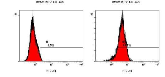 LC3A Antibody (PA5-22990) in Flow Cytometry