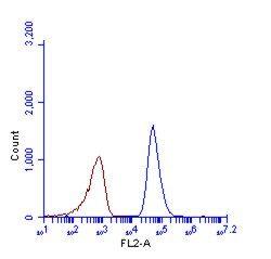 SQSTM1 Antibody (PA5-27247) in Flow Cytometry