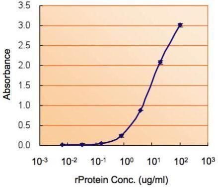 MIF Antibody (PA5-27343) in ELISA