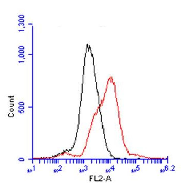 TGF beta Receptor I Antibody (PA5-27785)