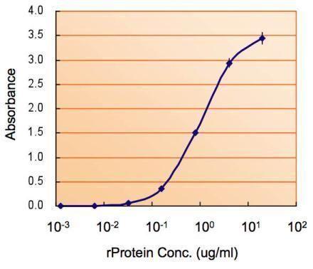 MAOB Antibody (PA5-28338) in ELISA