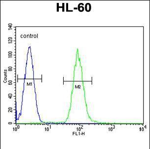DPP3 Antibody (PA5-35038) in Flow Cytometry