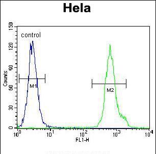 LRRC45 Antibody (PA5-35045) in Flow Cytometry