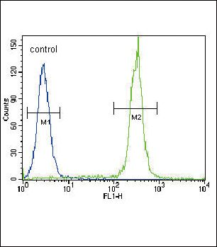 betacellulin Antibody (PA5-35064) in Flow Cytometry