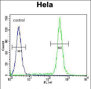 TBX6 Antibody (PA5-35065) in Flow Cytometry