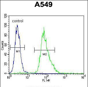 MYBPHL Antibody (PA5-35074) in Flow Cytometry