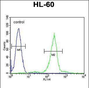 C1QC Antibody (PA5-35084) in Flow Cytometry