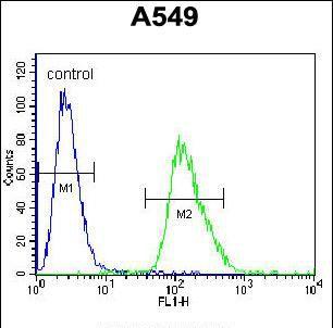 beta Arrestin 1 Antibody (PA5-35089) in Flow Cytometry
